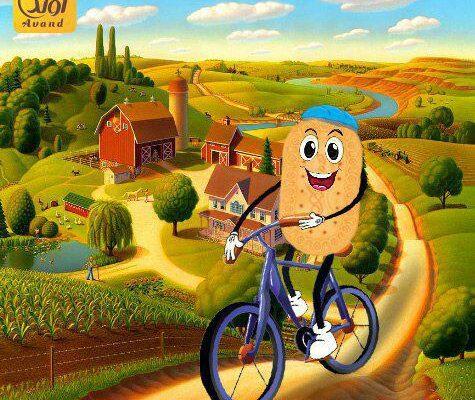 میان وعده دوچرخه سواران